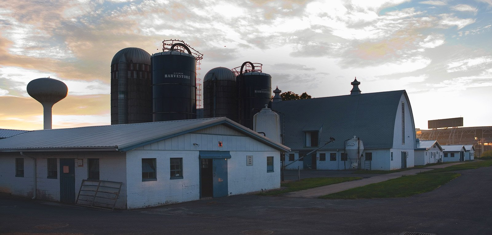 Penn State dairy barns