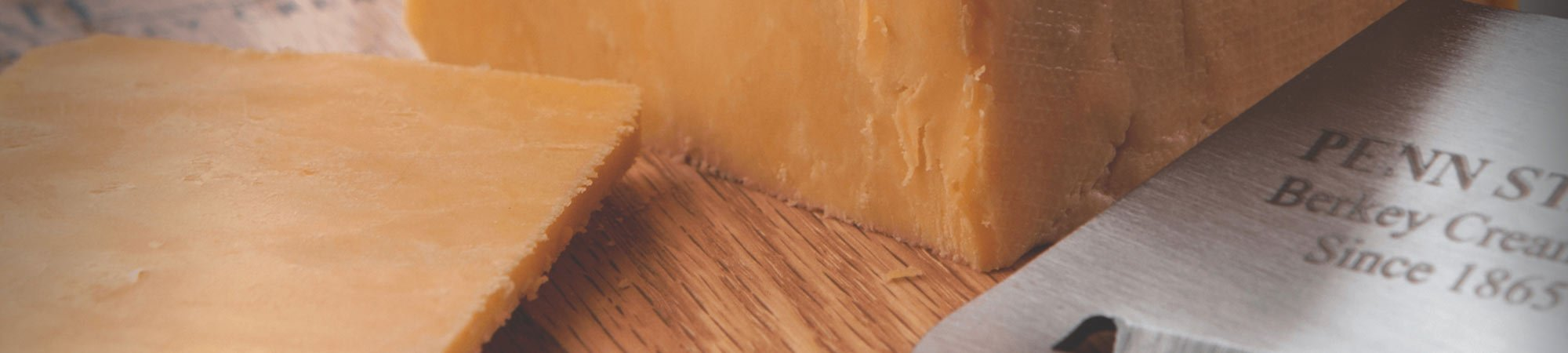 Close up cheddar cheese